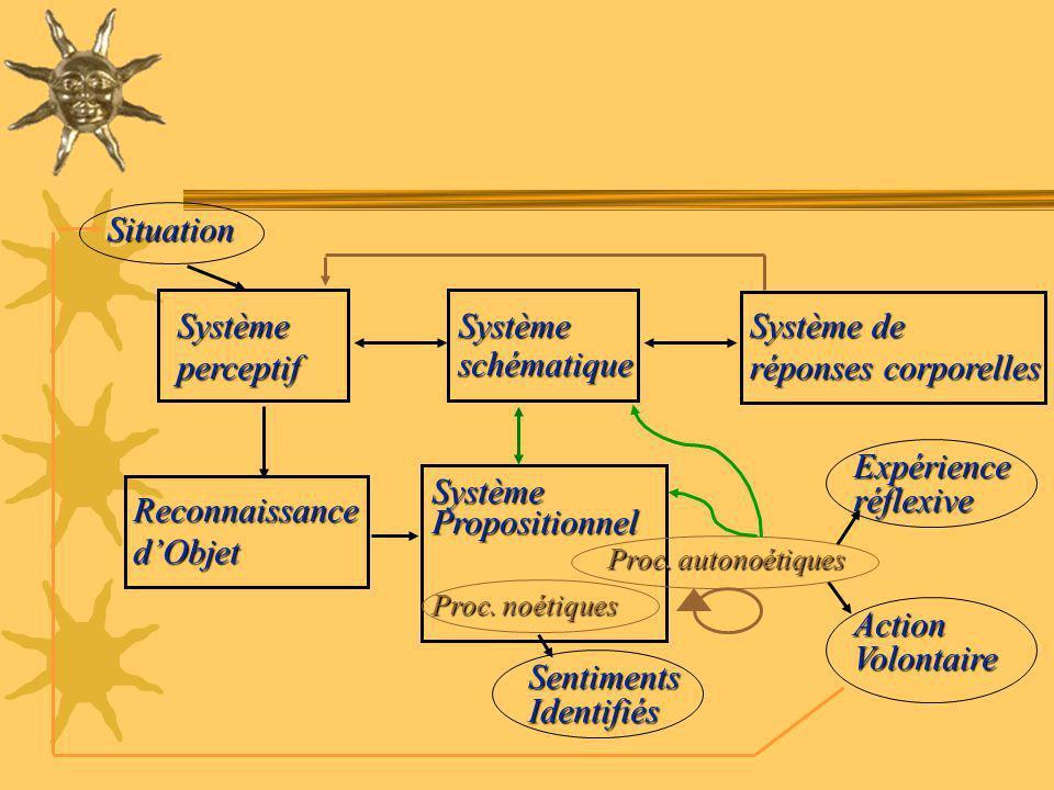 Situation Système perceptif Système schématique Système de
