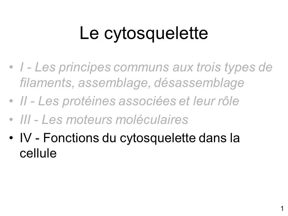 Mercredi 21 novembre 2007 Le cytosquelette. I - Les principes communs aux trois types de filaments, assemblage, désassemblage.