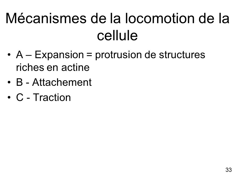 Mécanismes de la locomotion de la cellule