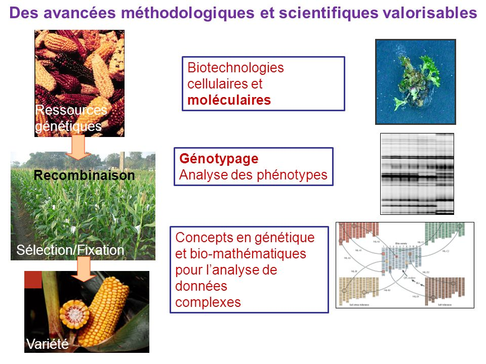 Des avancées méthodologiques et scientifiques valorisables
