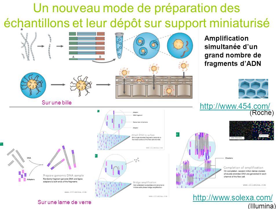Un nouveau mode de préparation des échantillons et leur dépôt sur support miniaturisé