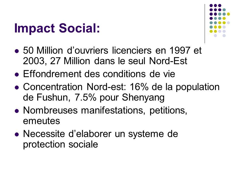 Impact Social: 50 Million d'ouvriers licenciers en 1997 et 2003, 27 Million dans le seul Nord-Est. Effondrement des conditions de vie.
