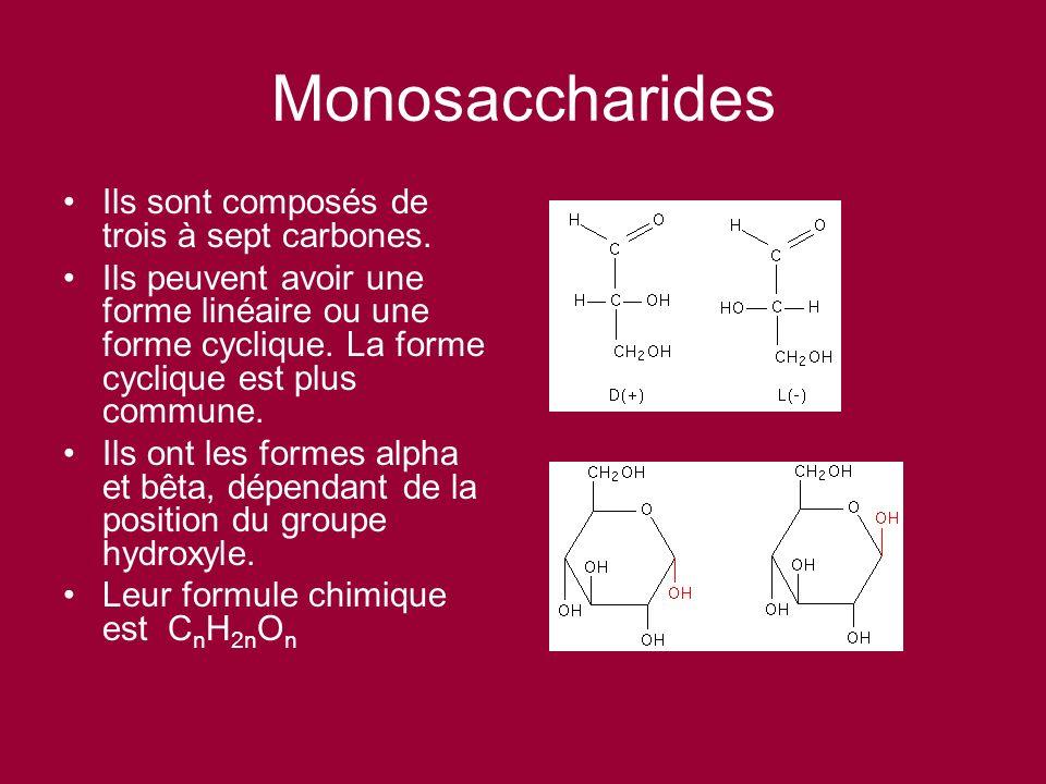 Monosaccharides Ils sont composés de trois à sept carbones.