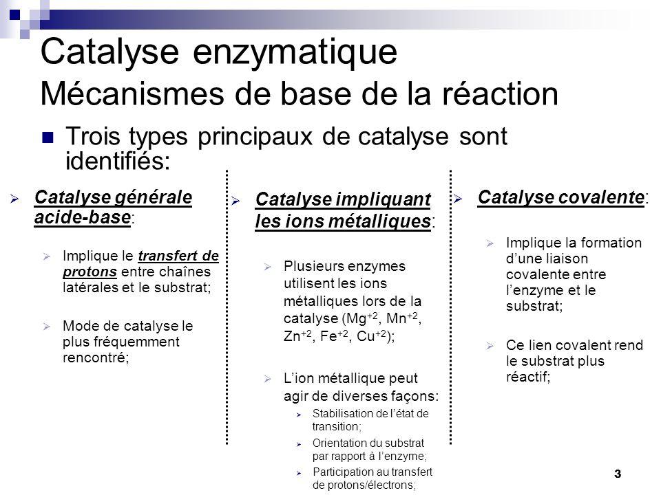 Catalyse enzymatique Mécanismes de base de la réaction