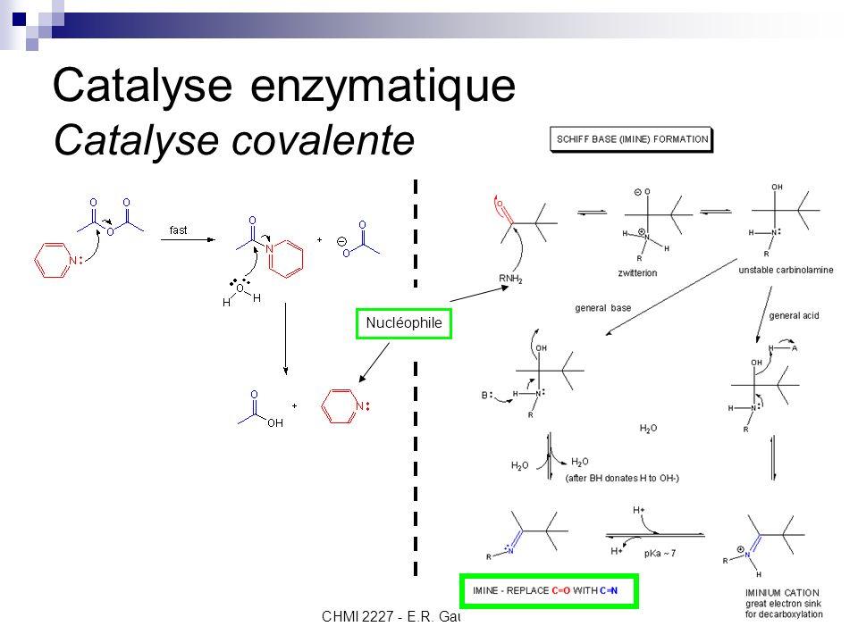 Catalyse enzymatique Catalyse covalente