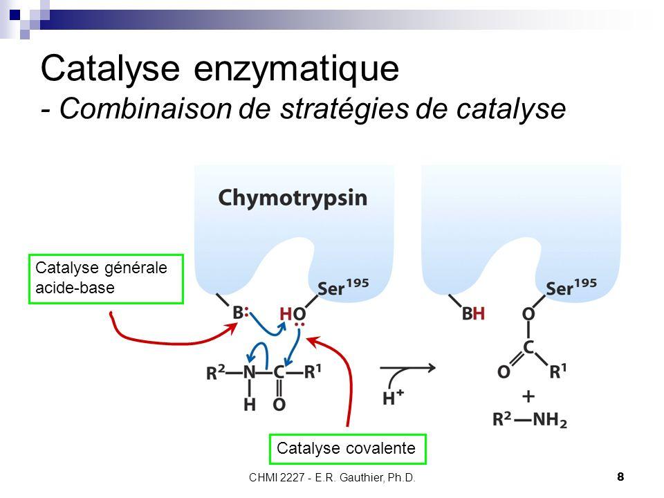 Catalyse enzymatique - Combinaison de stratégies de catalyse