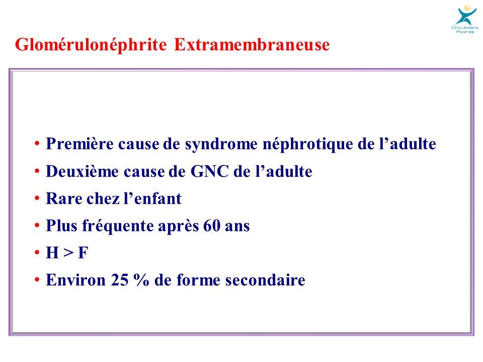 Glomérulonéphrite Extramembraneuse