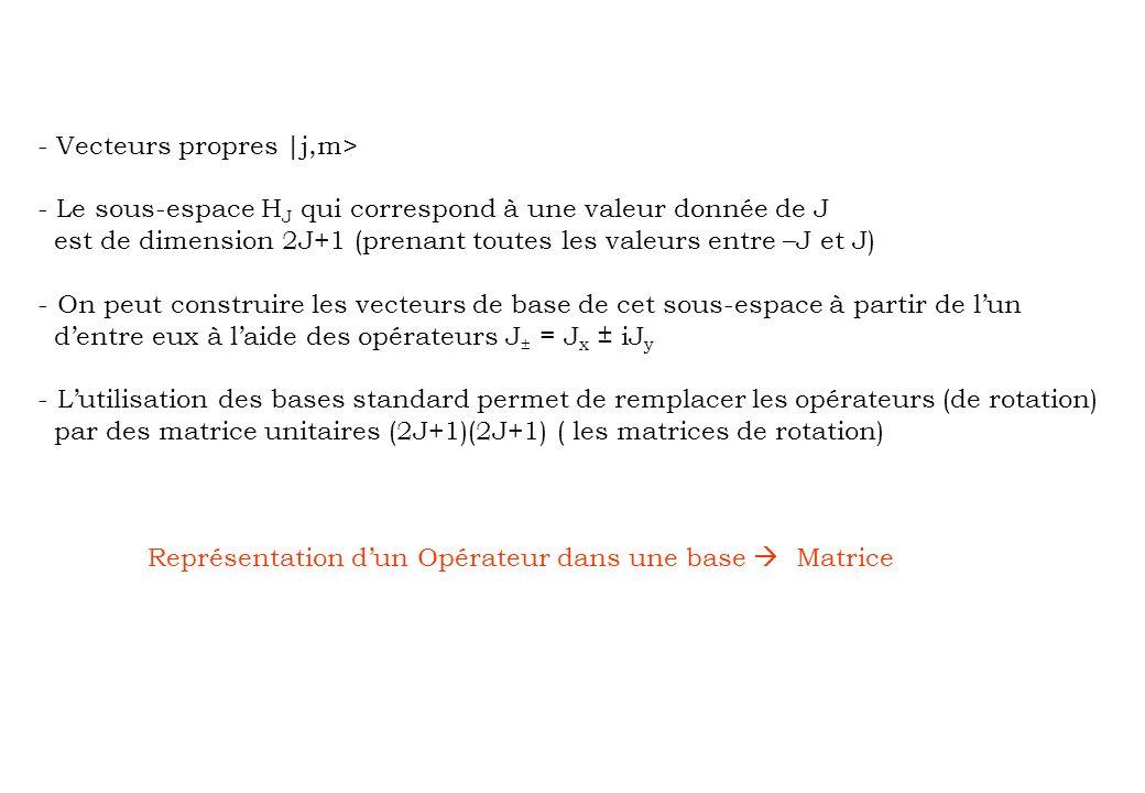 - Vecteurs propres |j,m>