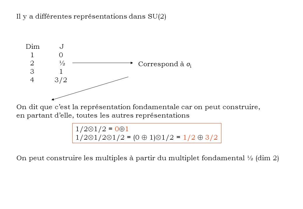 Il y a différentes représentations dans SU(2)
