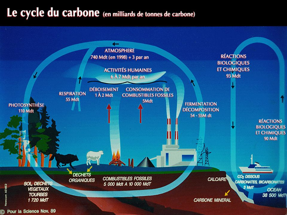 Ici est représenté le cycle du carbone lié aux deux principaux gaz à effet de serre, le CO2 et le CH4. .L'unité utilisée est le milliard de tonnes d'équivalent carbone (Mds tC) émise ou captée pendant une année.