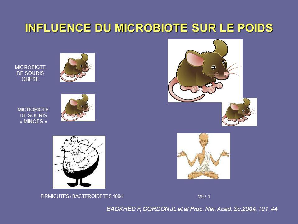 INFLUENCE DU MICROBIOTE SUR LE POIDS