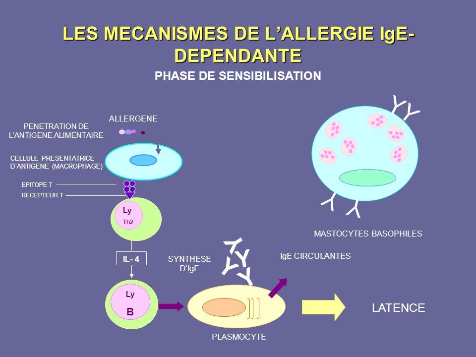 LES MECANISMES DE L'ALLERGIE IgE-DEPENDANTE
