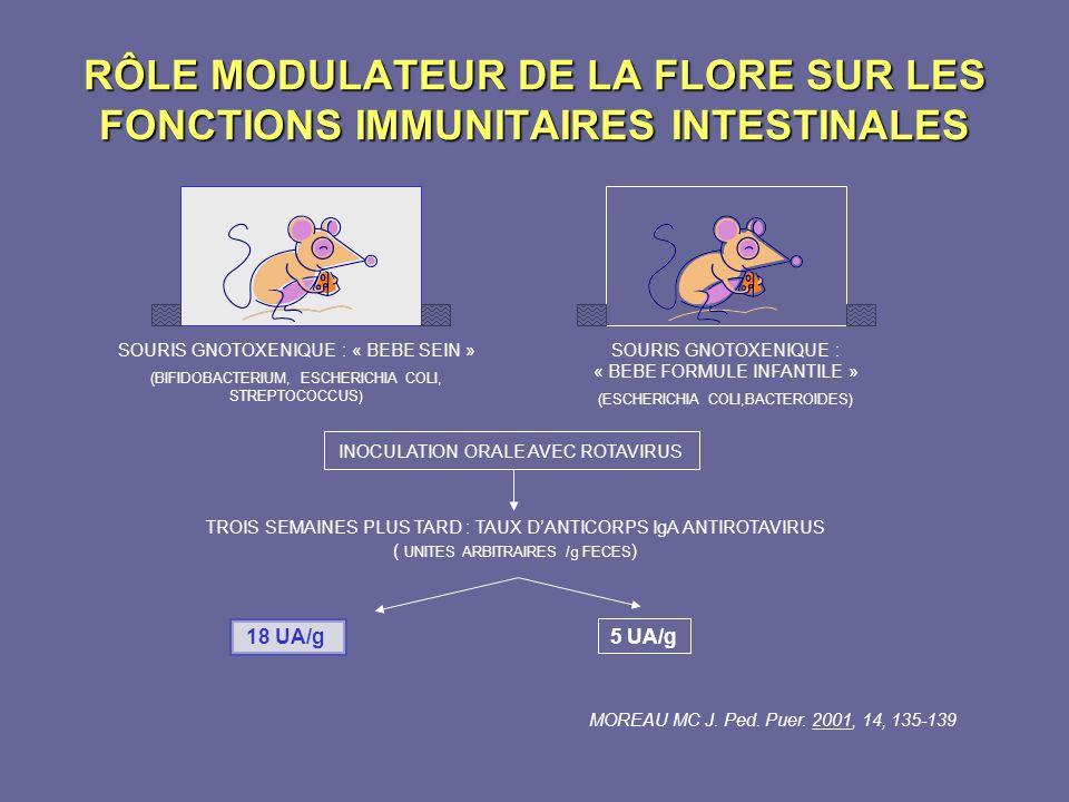 RÔLE MODULATEUR DE LA FLORE SUR LES FONCTIONS IMMUNITAIRES INTESTINALES