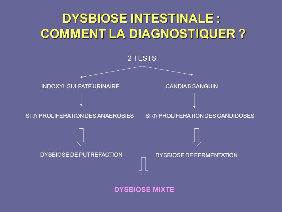 DYSBIOSE INTESTINALE : COMMENT LA DIAGNOSTIQUER