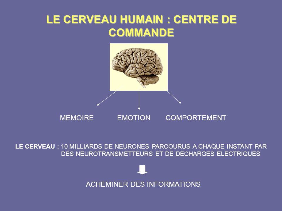 LE CERVEAU HUMAIN : CENTRE DE COMMANDE