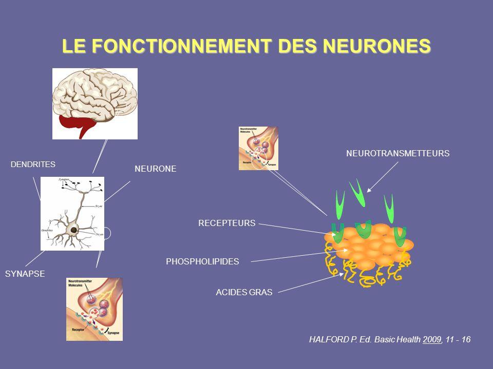 LE FONCTIONNEMENT DES NEURONES