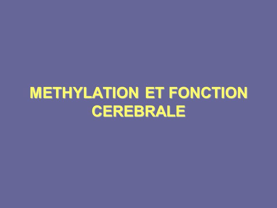 METHYLATION ET FONCTION CEREBRALE