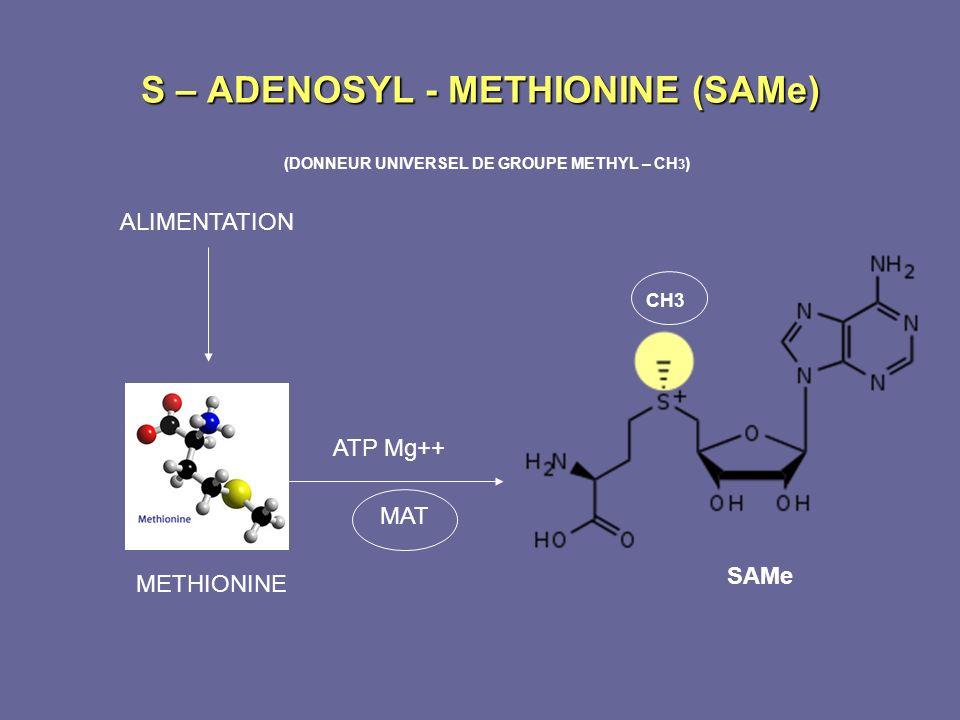 S – ADENOSYL - METHIONINE (SAMe)