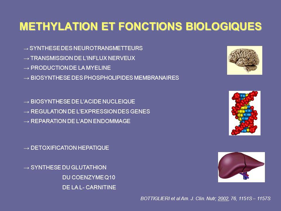 METHYLATION ET FONCTIONS BIOLOGIQUES
