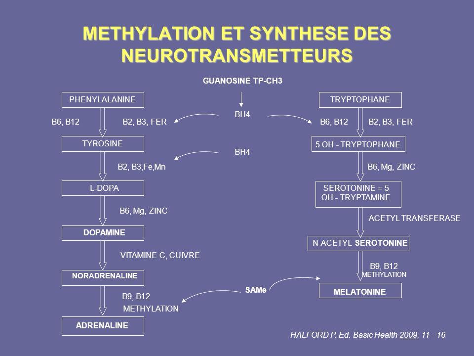 METHYLATION ET SYNTHESE DES NEUROTRANSMETTEURS