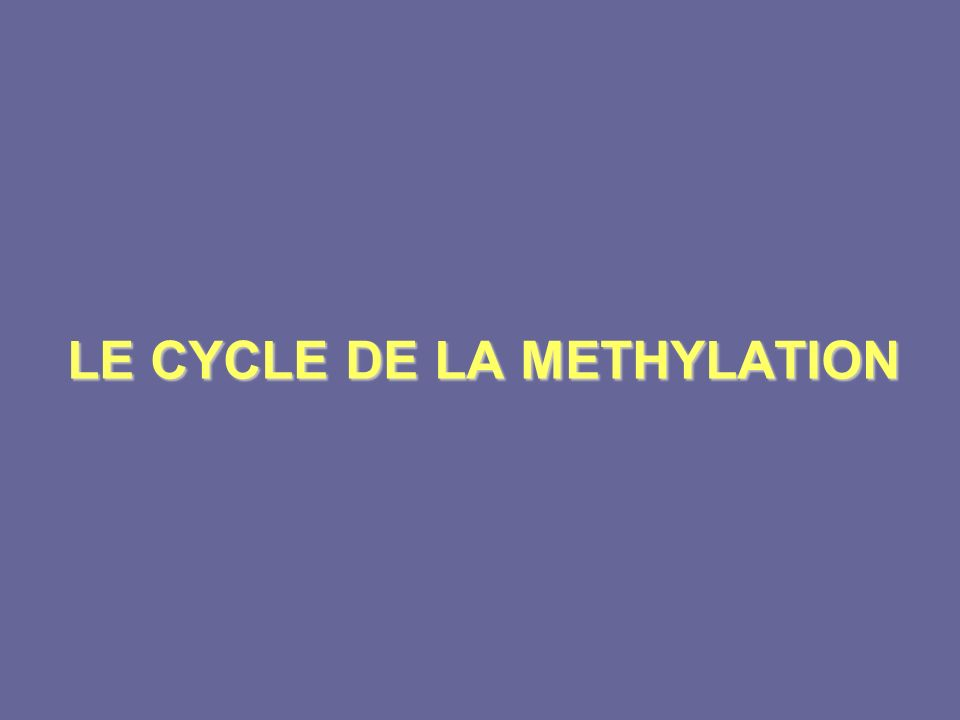 LE CYCLE DE LA METHYLATION