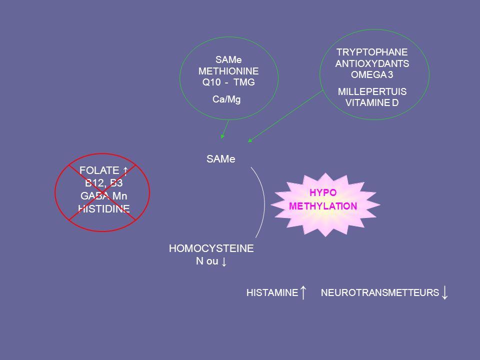 FOLATE ↑ B12, B3 GABA Mn HISTIDINE