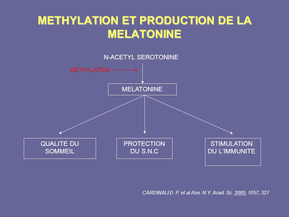 METHYLATION ET PRODUCTION DE LA MELATONINE