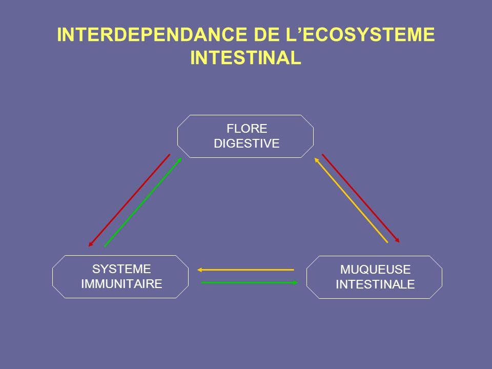 INTERDEPENDANCE DE L'ECOSYSTEME INTESTINAL