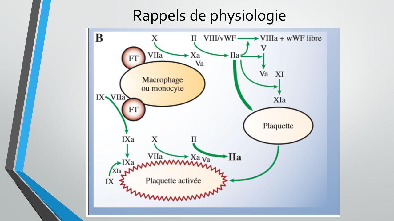 Rappels de physiologie