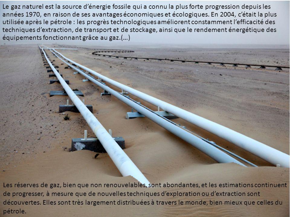 Le gaz naturel est la source d'énergie fossile qui a connu la plus forte progression depuis les années 1970, en raison de ses avantages économiques et écologiques. En 2004, c'était la plus utilisée après le pétrole : les progrès technologiques améliorent constamment l'efficacité des techniques d'extraction, de transport et de stockage, ainsi que le rendement énergétique des équipements fonctionnant grâce au gaz.(…)