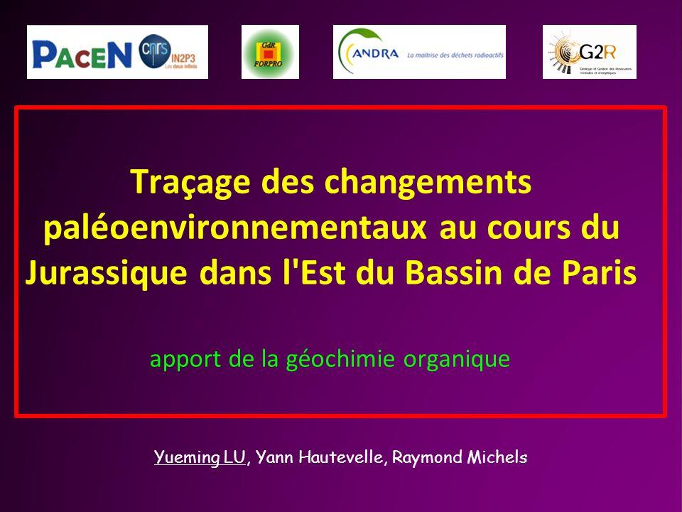 Traçage des changements paléoenvironnementaux au cours du Jurassique dans l Est du Bassin de Paris