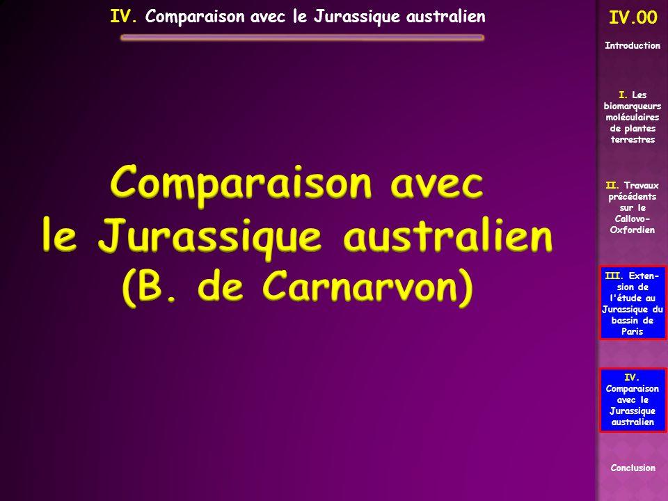 Comparaison avec le Jurassique australien