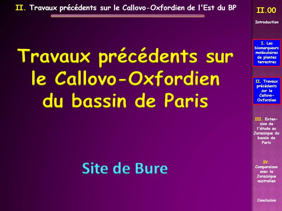 Travaux précédents sur le Callovo-Oxfordien du bassin de Paris