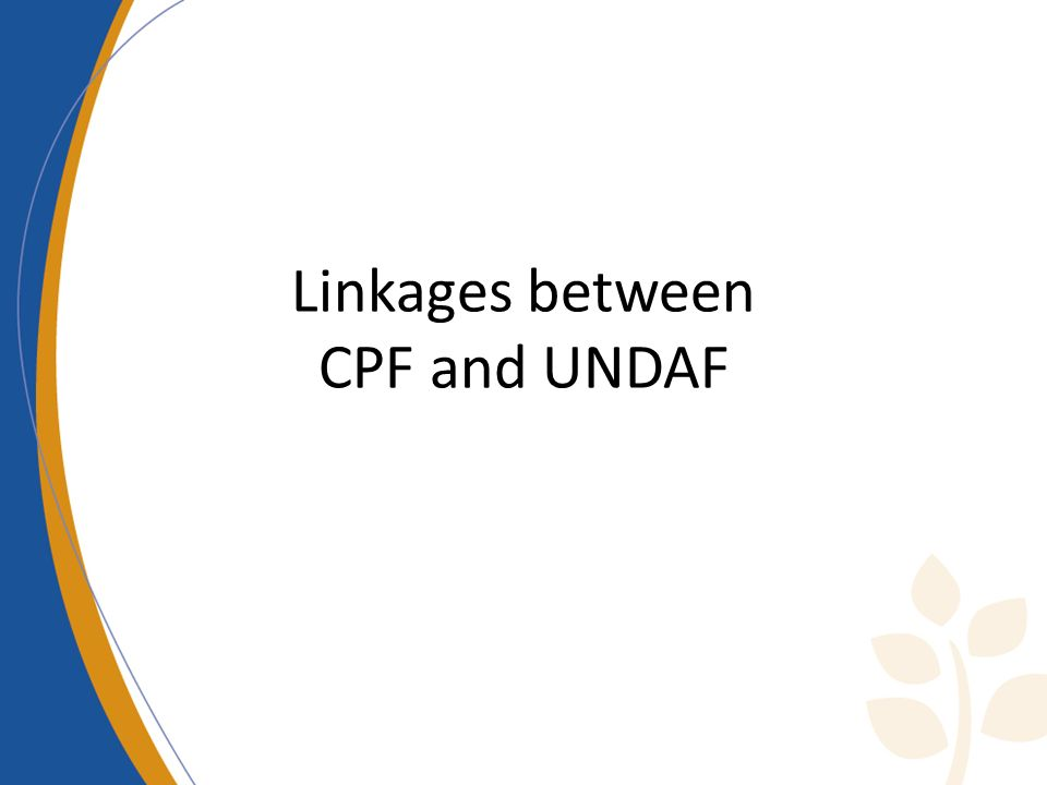 Linkages between CPF and UNDAF