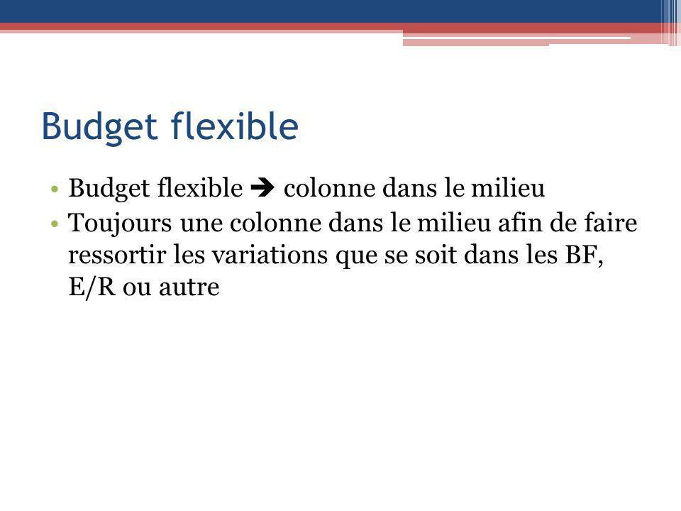 Budget flexible Budget flexible  colonne dans le milieu