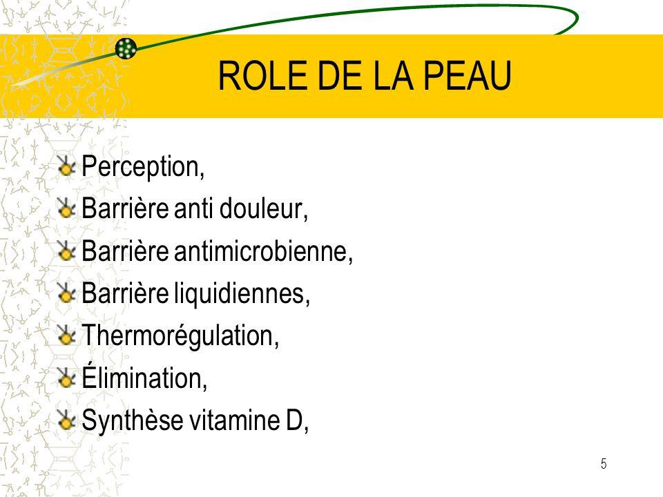 ROLE DE LA PEAU Perception, Barrière anti douleur,