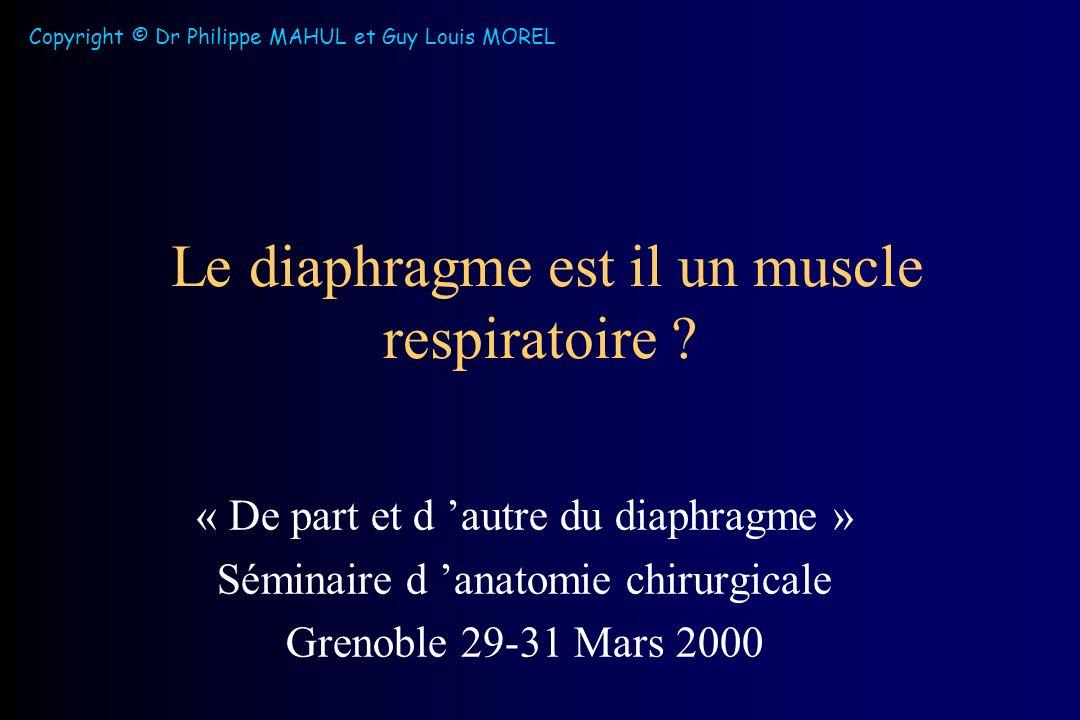 Le diaphragme est il un muscle respiratoire