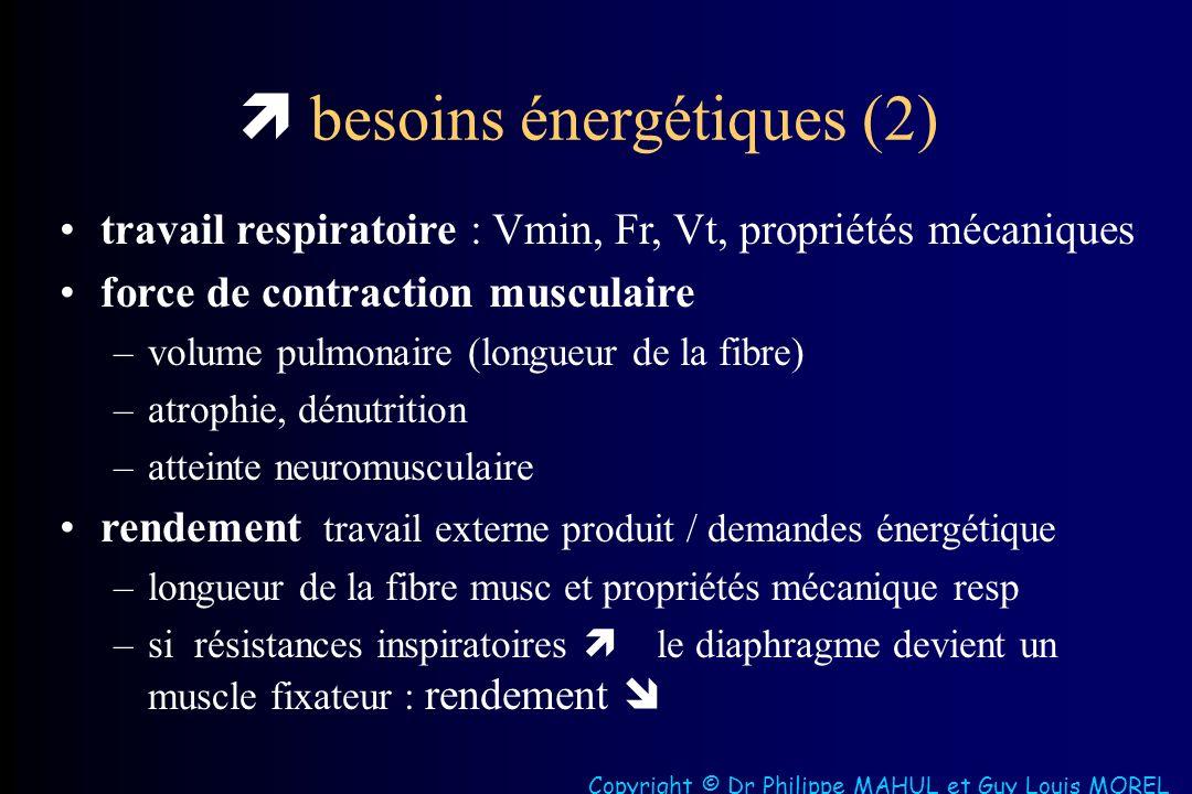  besoins énergétiques (2)