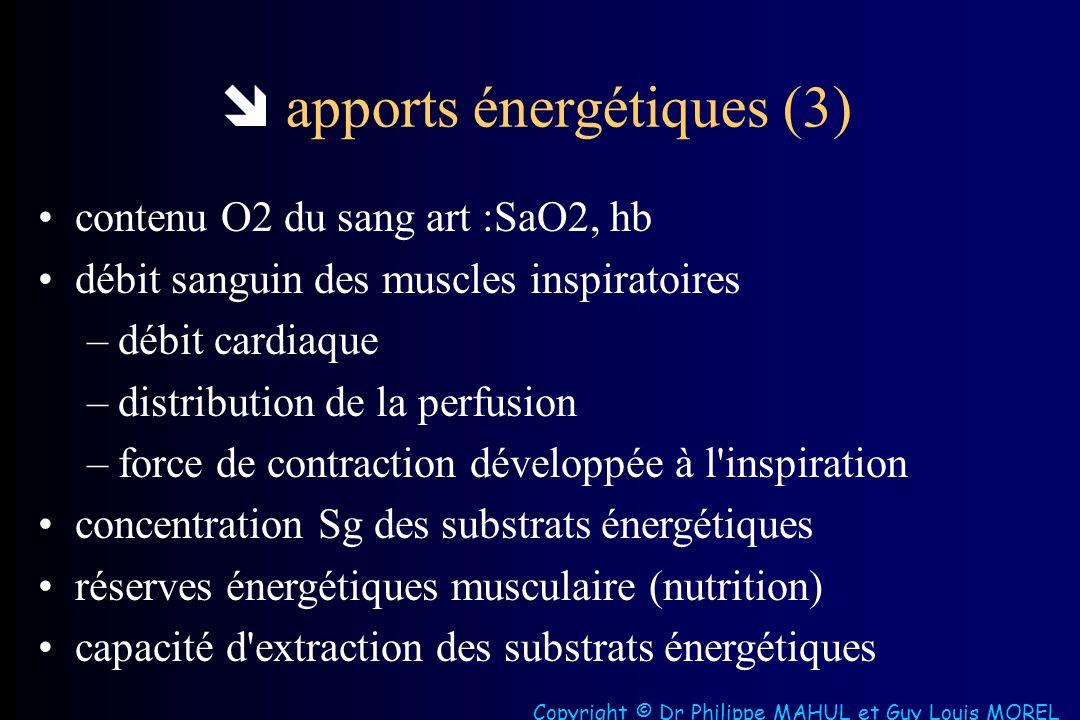  apports énergétiques (3)