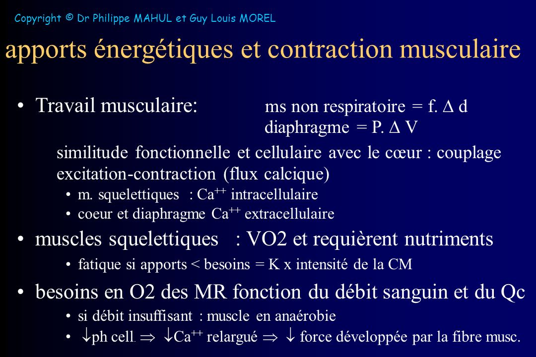 Copyright © Dr Philippe MAHUL et Guy Louis MOREL