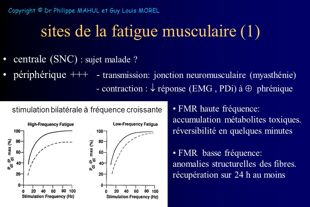 sites de la fatigue musculaire (1)