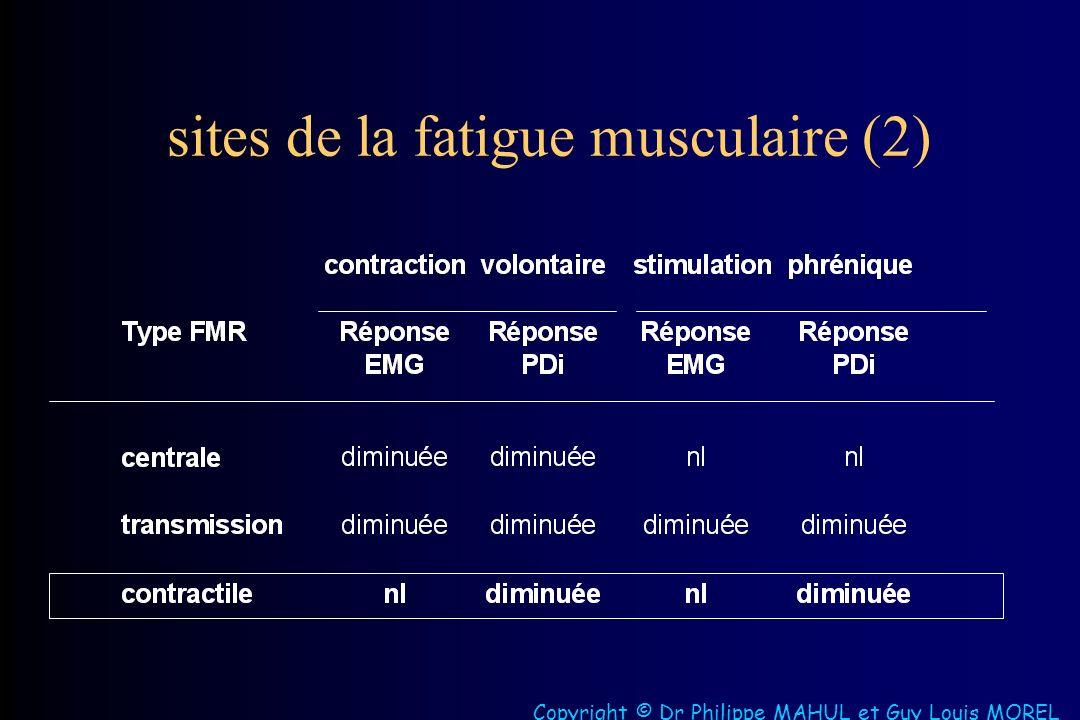 sites de la fatigue musculaire (2)