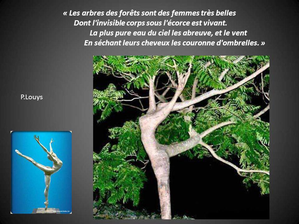 « Les arbres des forêts sont des femmes très belles Dont l invisible corps sous l écorce est vivant. La plus pure eau du ciel les abreuve, et le vent En séchant leurs cheveux les couronne d ombrelles. »