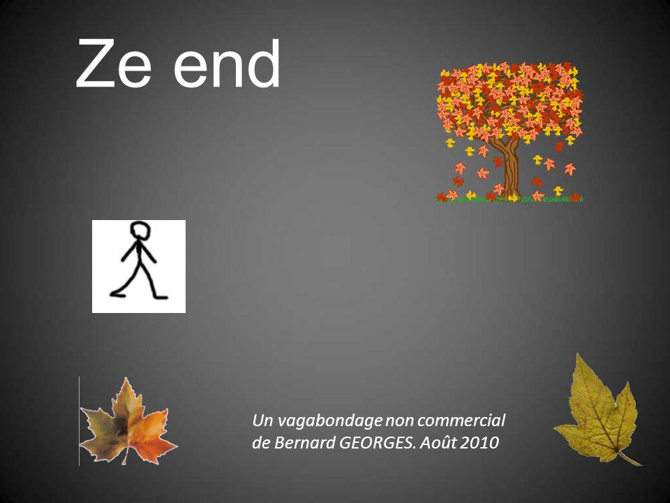 Ze end Un vagabondage non commercial de Bernard GEORGES. Août 2010