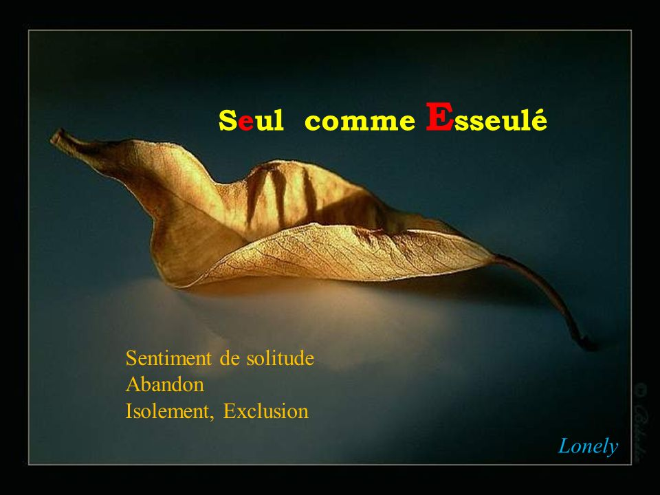 Seul comme Esseulé Sentiment de solitude Abandon Isolement, Exclusion