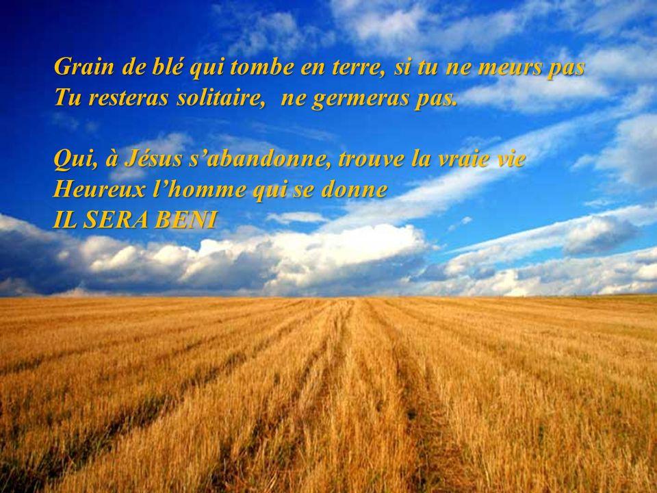 Grain de blé qui tombe en terre, si tu ne meurs pas