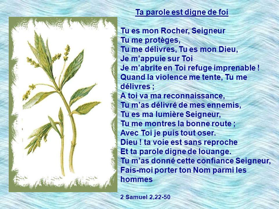 Ta parole est digne de foi Tu es mon Rocher, Seigneur Tu me protèges,