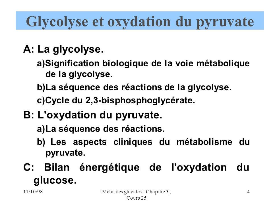 Glycolyse et oxydation du pyruvate