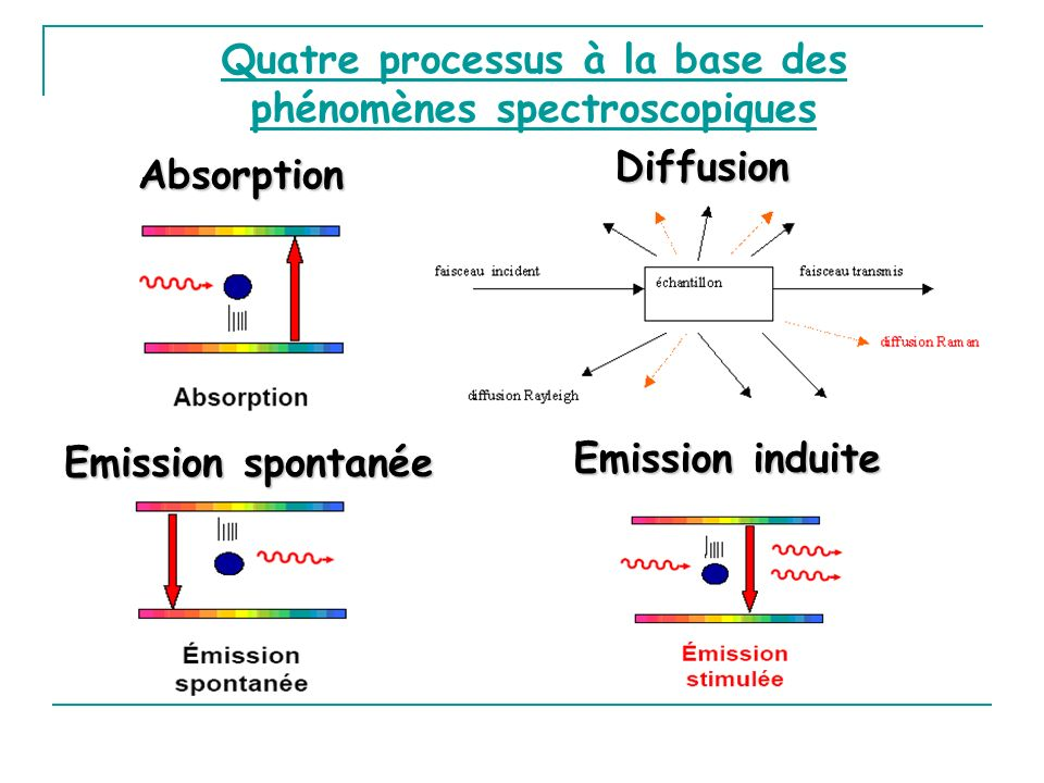 Quatre processus à la base des phénomènes spectroscopiques