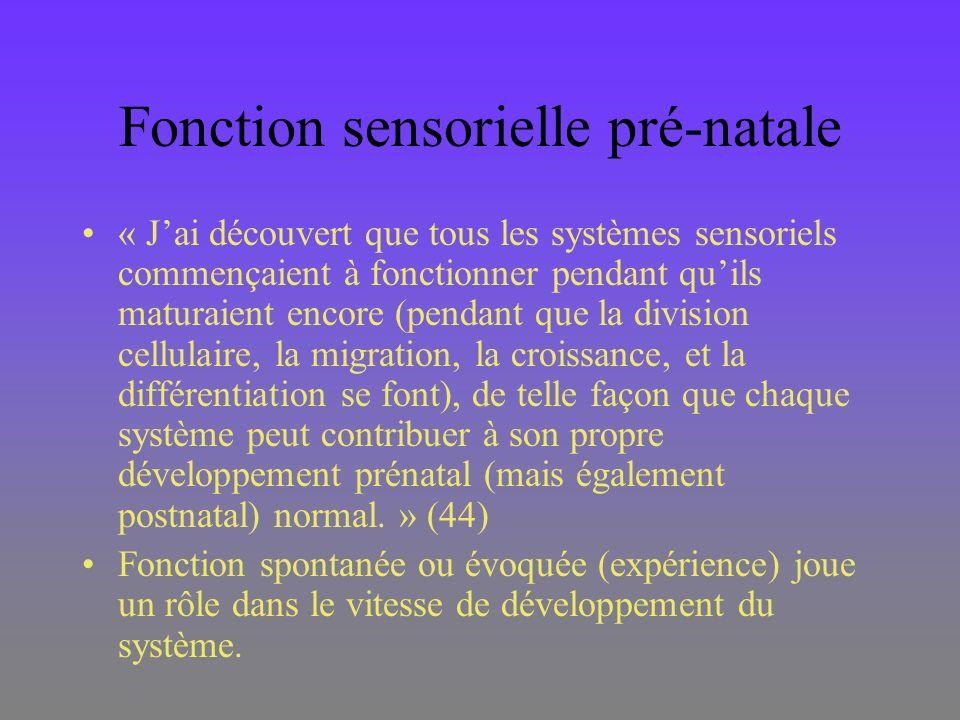Fonction sensorielle pré-natale